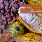 Ultra-Delicious Cocoa Tea Recipe